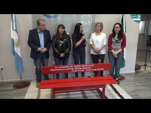 Presentación del Banco Rojo en la Legislatura de Rio Negro