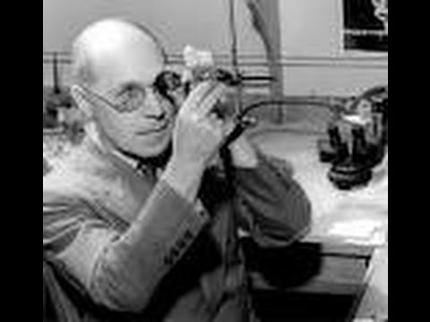 Who was Herman Muller?   The Geneticist   Early Life   Discovery   Genetic Mutation