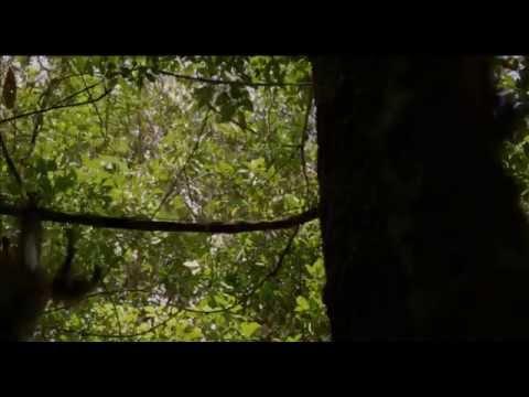 Amazoniya - Dublyaj edilmiş treyler
