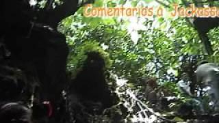 Cuilapa (película) *** Cortometraje** ...