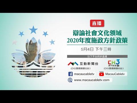 辯論社會文化領域2020年度施政方針 ...