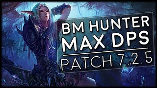 Let's have a look at our neighbour the Beast Mastery Hunter and see how we're doing in 7.2.5 and going forward into the Tomb of ...