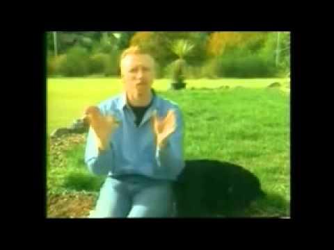 11 Adiestramiento de perros – Curso completo YOUTUBE