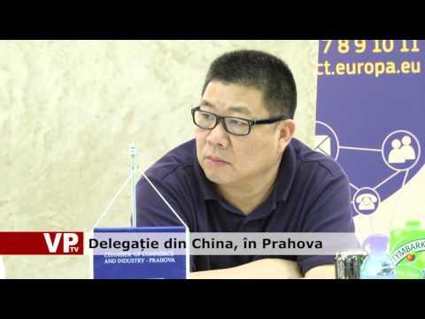 Delegație din China, în Prahova
