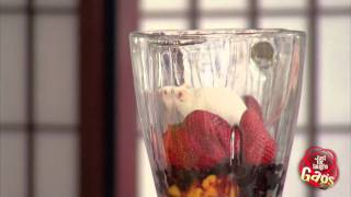 Mouse Smoothie Gag