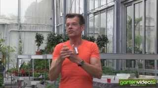 #1072 Karl Plobergers Favouriten bei Salat Obst und Gemüse