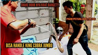Video KING COBRA GEDE PUNYA TYO SURVIVAL MP3, 3GP, MP4, WEBM, AVI, FLV November 2018