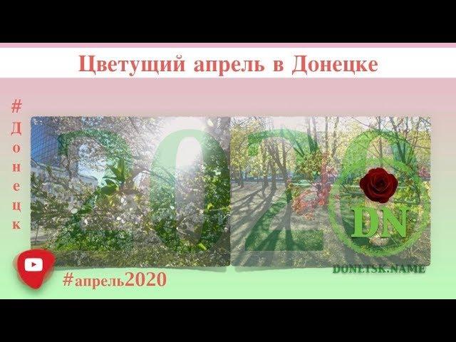 Как выглядит Донецк в апреле 2020 (видео)