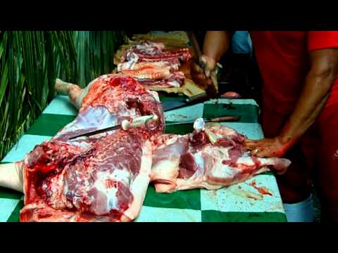 Fast Test Butcher in Pinas. Part 1