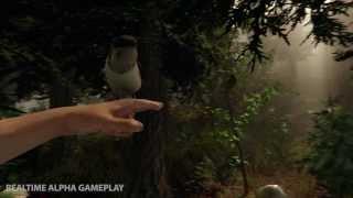 Трейлер хоррора The Forest