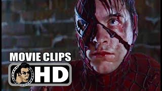 Video SPIDER-MAN All Clips + Trailer (2002) MP3, 3GP, MP4, WEBM, AVI, FLV November 2018