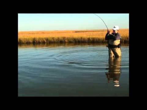 Texas Saltwater Series Back Creek Safari