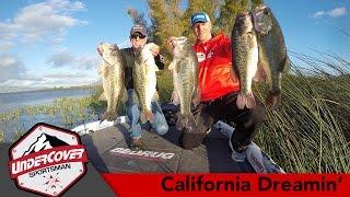 Clearlake (CA) United States  City new picture : California Dreamin' | Clear Lake-California Delta Bass Fishing
