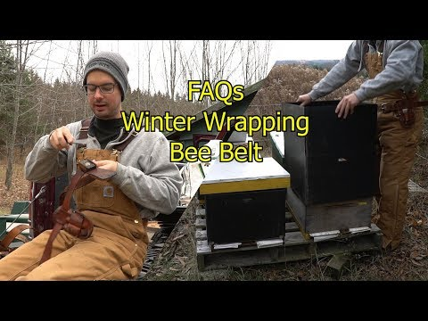 Beekeeping 2017 FAQ's - My Bee Belt, Winter Wrapping