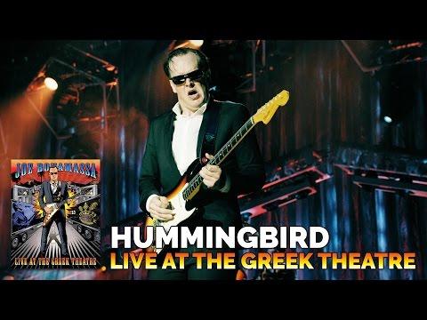 Hummingbird (Live)