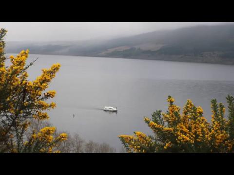На озере Лох-Несс опять заметили монстра