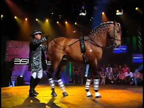 cavalos - Adestrador de cavalos surpreende jurados com show Programa exibido em 10/09/12.