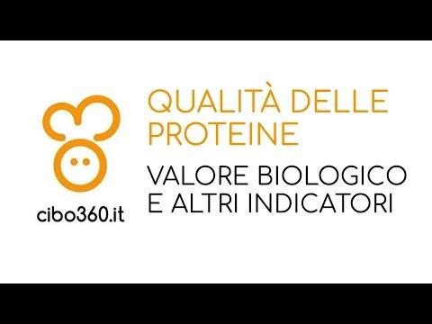 Qualità delle proteine: valore biologico e altri indicatori