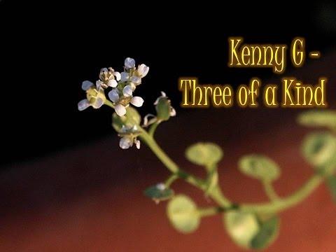 Kenny G Three Of A Kind