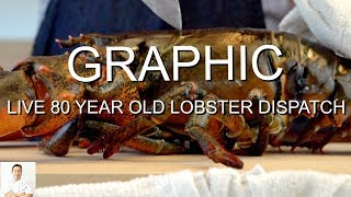 GRAPHIC: LIVE 80 Year Old Lobster Dispatch (Slow Mo) | Cook and Sushi by Diaries of a Master Sushi Chef