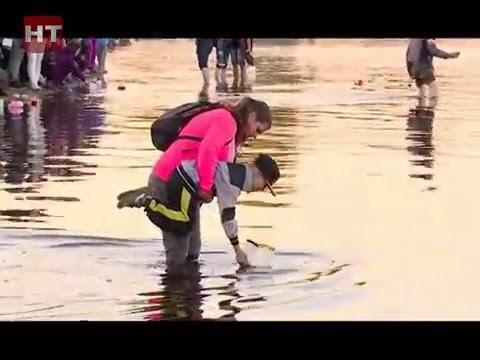 В Великом Новгороде прошел первый фестиваль водных фонариков