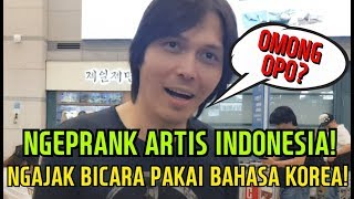 Video Ngeprank! Jika Artis-artis Indonesia Diajak Bicara Pakai Bahasa Korea? MP3, 3GP, MP4, WEBM, AVI, FLV September 2018