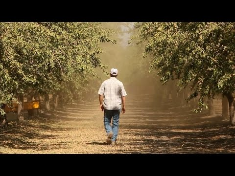 California's Central Valley: 'More Than Just Farmers on Tractors' | KQED News