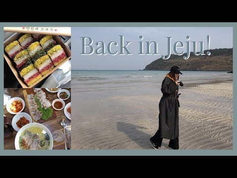 Where To Go/what To Eat In JEJU 🍊 |vlog#13