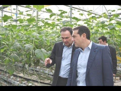 Αλ.Τσίπρας: Η κυβέρνηση στηρίζει την υγιή επιχειρηματικότητα που σέβεται τις εργασιακές σχέσεις