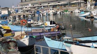 برومو: قريبا - سلسلة تقارير تُسلط الضوء على محاولات اقتلاع الصيادين من ميناء يافا