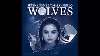 Video Wolves - Selena Gomez (Lyrics) MP3, 3GP, MP4, WEBM, AVI, FLV Agustus 2018