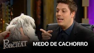 Maurício fala sobre seu novo trabalho e Porchat comenta que os cachorros não gostam dele.Saiba mais em http://www.r7.com/porchatFacebook: http://www.facebook.com/programadoporchatInstagram: http://www.instagram.com/pgmdoporchat