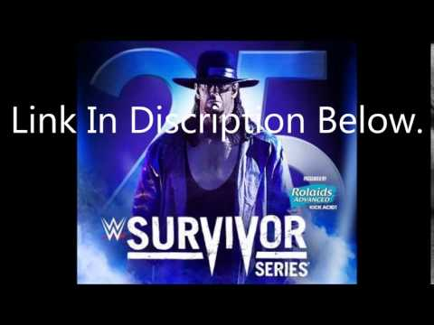 Survivor Series 2015 highlights.