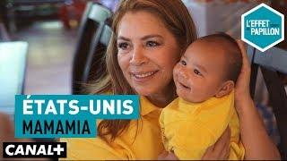 Video États-Unis : Mamamia - L'Effet Papillon – CANAL+ MP3, 3GP, MP4, WEBM, AVI, FLV Agustus 2018