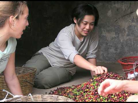 [Video-Stanford's Guatemala Service Learning Trip, 2008-10]