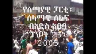 Semayawi Party Demonstration Addis Ababa June 1, 2013