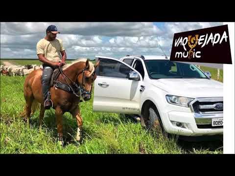 Vou Virar Fazendeiro (Vaquejada Music)