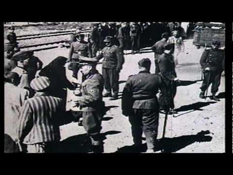Sintikinder im Nazi-Staat: »Auf wiedersehn im Himmel« ...