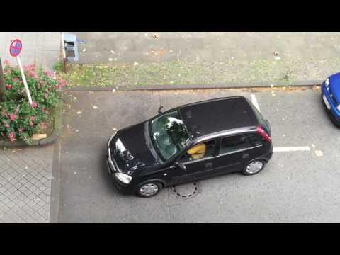 三寶中的極品!這女司機在停車位一直「進進又出出」,連在旁拍攝的都忍不住噴血了!