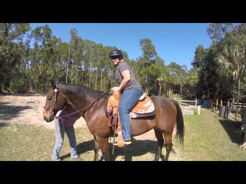 Horseback Riding For Grand Cayman Cruise