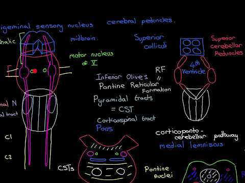 Headaches Part 7
