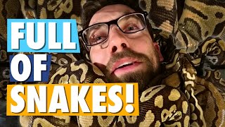 Video Snake Bites Eric's Crotch | Cold-Blooded Trivia #1 MP3, 3GP, MP4, WEBM, AVI, FLV Maret 2019