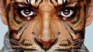 Photoshop ile hayvan yüzünün içine insan yüzü yerleştirme