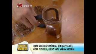 İdrar Yolu Enfeksiyonları İçin Çay Tarifi - Dr. Ender Saraç