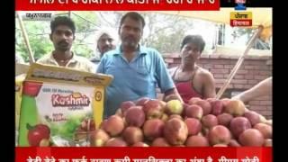 Yamunanagar India  city photos : Kashmiri Apples carrying messages against India caught in Yamunanagar