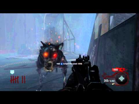 Call Of Duty Black Ops Zombies Dog Barrier