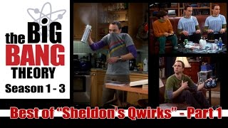 "Video Best of Big Bang Theory  - ""Sheldon's Qwirks"" Part 1 (of 3) MP3, 3GP, MP4, WEBM, AVI, FLV Oktober 2018"