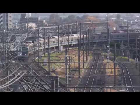 Trains from Seibu Ikebukuro line and Seibu Shinjuku line seen from Tokoniwa (видео)