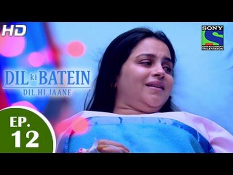Dil Ki Baatein Dil Hi Jaane [Precap Promo] 720p 13