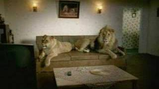 SKY Documentaries - Lion Couple